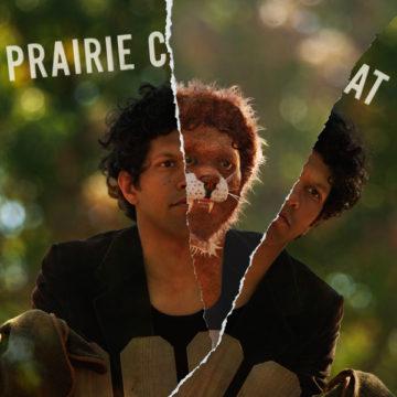 Prairie Cat