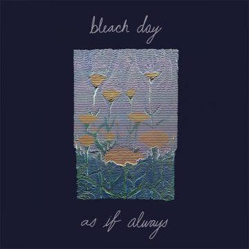 Bleach Day