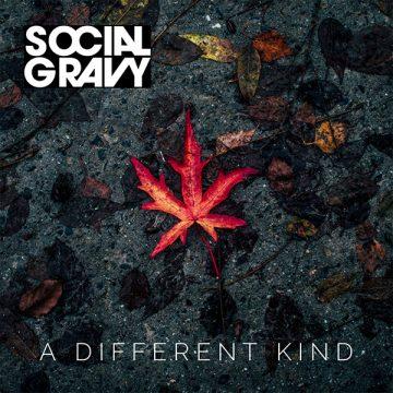 Social Gravy