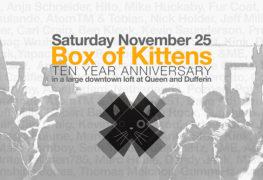 Box Of Kittens