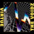 The Voidz