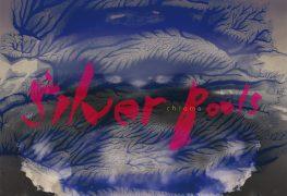Silver Pools